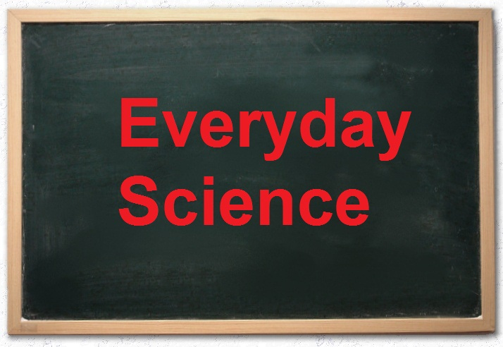essay on uses of science in everyday life
