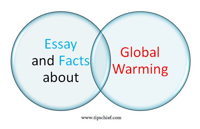 global warming in essay writing