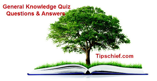 100 Most Important General Knowledge Quiz Questions and Answers
