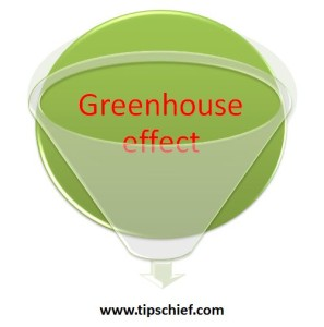 Green house effect essay