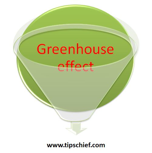 essay about green house effect You hear a lot about greenhouse gases and the greenhouse effect these days,  but what exactly is a greenhouse gas you may be surprised to learn.