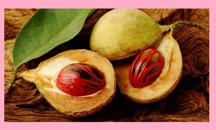 Nutmeg benefits and side effects