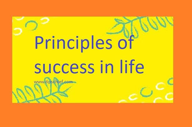 principles of success in life